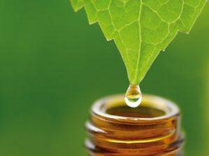 Introdução à Homeopatia
