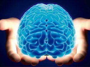 Especialização em Neurociências Agora você tem a oportunidade de fazer a sua especialização online. Inicio em maio/2019! Acesse:https://posonline.eephcfmusp.org.br/ e veja como participar! As Neurociências envolvem amplo campo do conhecimento científico, com conteúdo crescente e grande complexidade. A área atrai terapeutas que lidam com doenças neurológicas e pretendem ampliar seus conhecimentos na área, e também profissionais das áreas básicas científicas, que queiram enveredar por projetos na área neurocientífica. O curso também é de importante aplicação para o profissional que queira continuar seus estudos num programa de pós-graduação na área de Neurociências. O curso de especialização em neurociências visa oferecer aos participantes amplo conhecimento, partindo de conceitos neurocientíficos básicos até aspectos avançados de processos cognitivos e mentais, passando por aspectos de metodologia científica, neurociências aplicadas, estatística e redação científica. Objetivo do curso: Oferecer aos participantes amplo conhecimento das Neurociências, partindo de conceitos neurocientíficos básicos até aspectos avançados de processos cognitivos e mentais, passando por aspectos de metodologia científica, neurociências aplicadas, estatística e redação científica. O curso objetiva oferecer base sólida tanto para profissional com interesse acadêmico na área, capacitando-o para um curso de pós-graduação, quanto para trabalho técnico-laboratorial em neurociências. Também objetiva dar base sólida para o terapeuta nas áreas clínicas correlatas (Dor, Fonoaudiologia, Terapia Ocupacional, Fisioterapia, Psicologia, Enfermagem).