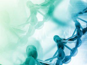 Capacitação em Oncogenética